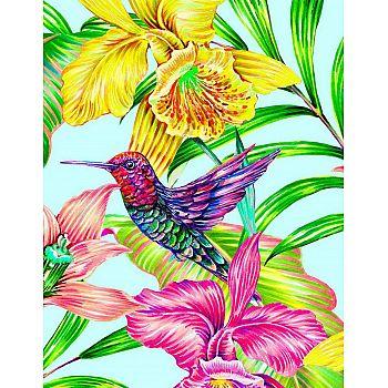 Набор для творчества Рыжий кот Холст с красками по номерам Яркая колибри в цветах (20цветов) 30х40 см