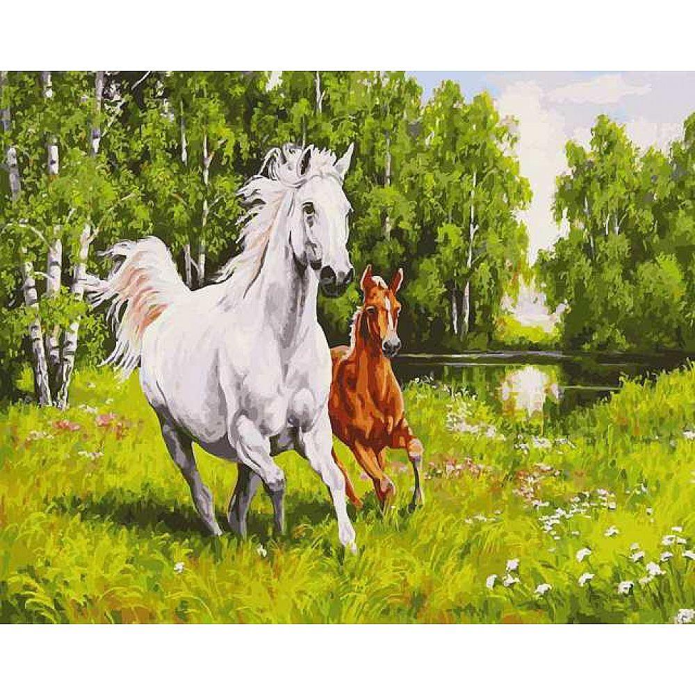 Набор для творчества Белоснежка картина по номерам на холсте На воле 40 на 50 см